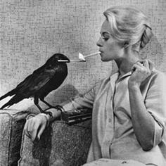 Los pájaros de Hitchcock detrás de las cámaras