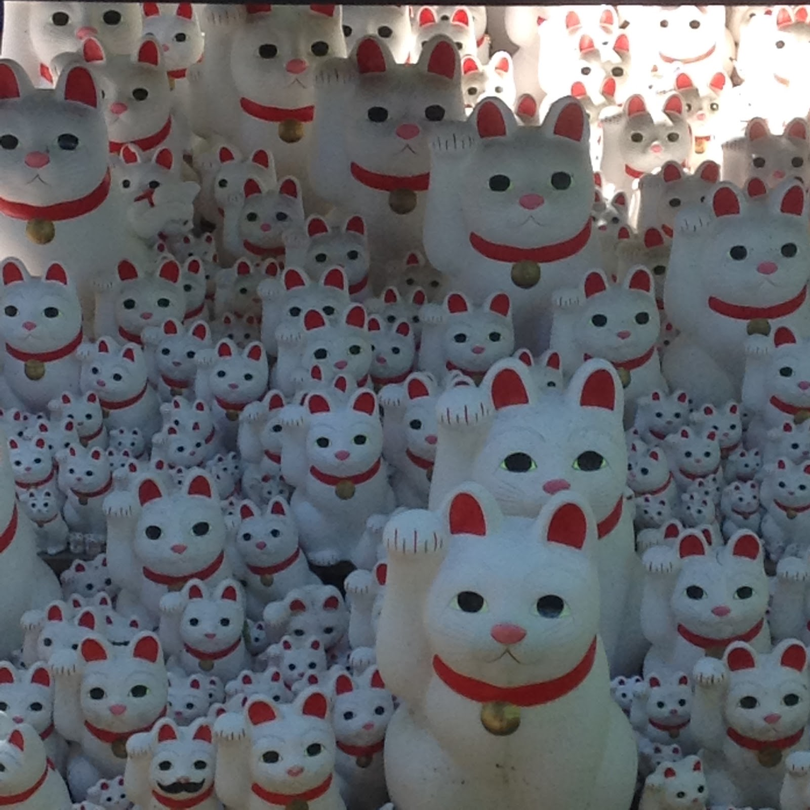 Lucky cat Gohtokuji Tokyo