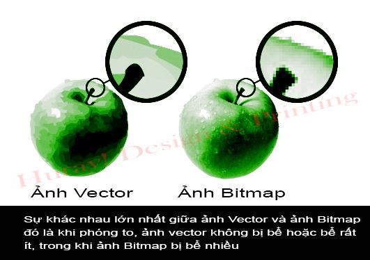 ảnh vector so sánh ảnh bitmap