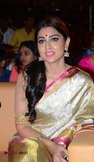Actress Shriya Saran New Images in Silk Saree at Gautamiputra Satakarni Audio Launch  0011.jpg