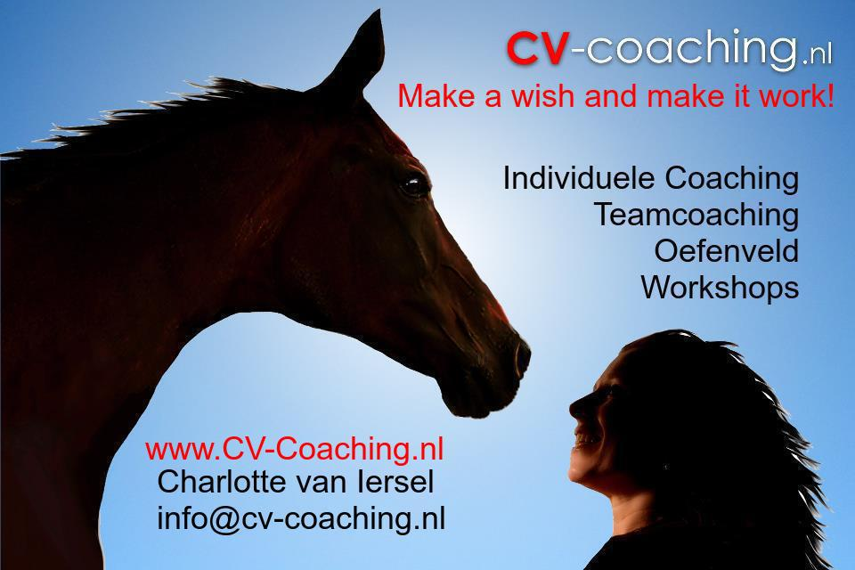 CV-Coaching door Charlotte van Iersel