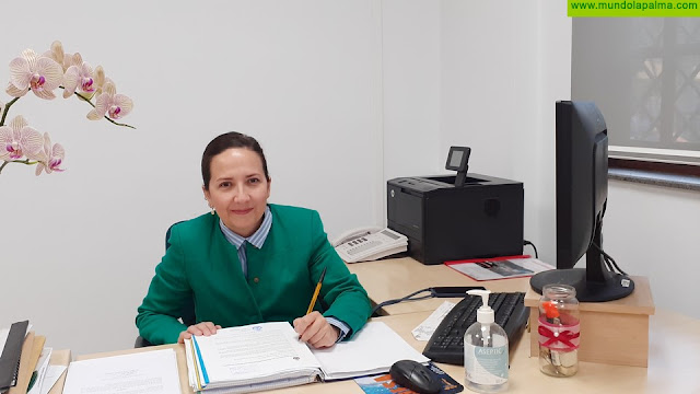 El Ayuntamiento de Los Llanos de Aridane abordará con las zonas comerciales y los profesionales del municipio acciones a desarrollar para paliar la situación originada por la crisis sanitaria por el coronavirus
