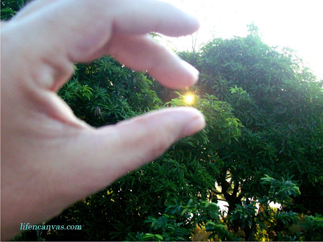 the sun in my hand