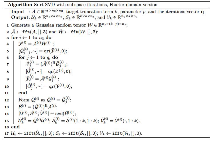 Nuit Blanche A Randomized Tensor Singular Value Decomposition Based