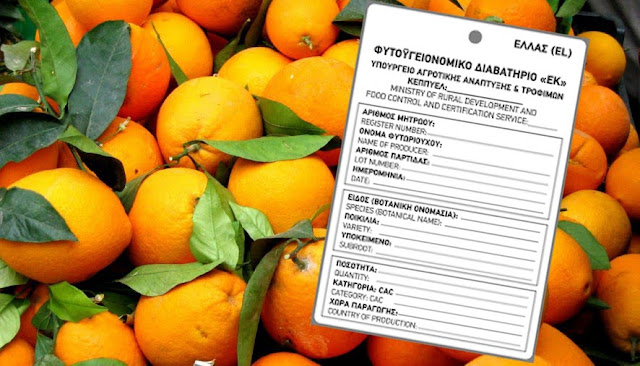 Υποχρεωτικό  το φυτοϋγειονομικό διαβατήριο για εσπεριδοειδή που διακινούνται με φύλλα και ποδίσκους
