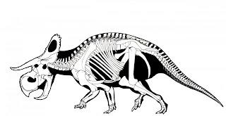 Resultado de imagen de nasutoceratops