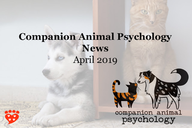 Cats that fetch, equine therapy, and the joy of dogs... the latest Companion Animal Psychology News