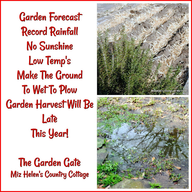 Garden Forecast: To Wet To Plow at Miz Helen's Country Cottage