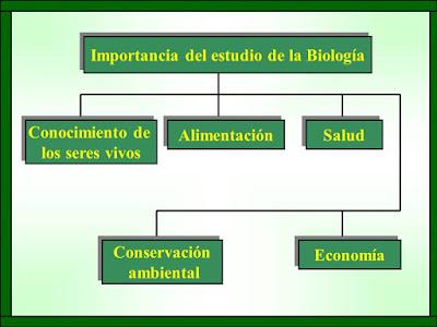 Importancia de la Biología