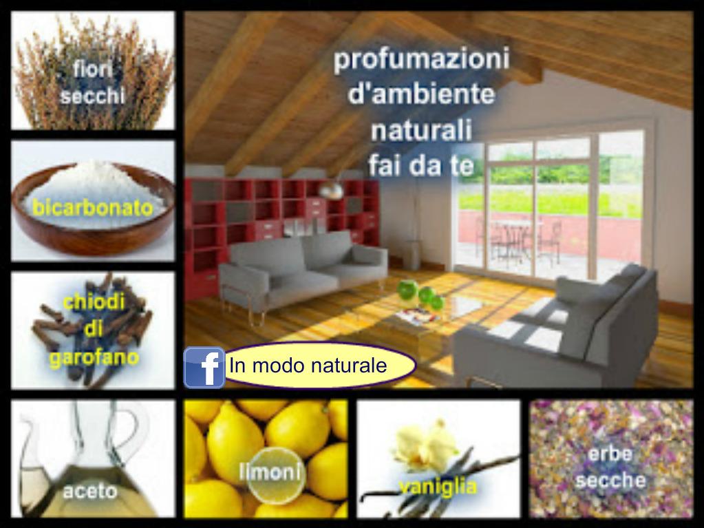 Per deodorare e togliere i cattivi odori in casa inner light healing in modo naturale - Cattivi odori in casa ...