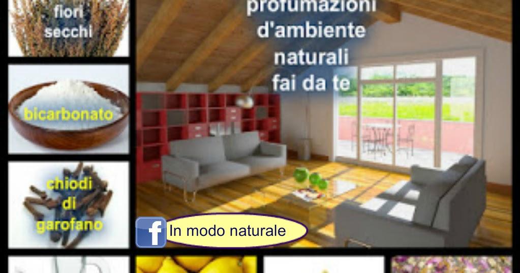 In modo naturale per deodorare e togliere i cattivi odori in casa inner light healing - Cattivi odori in casa ...