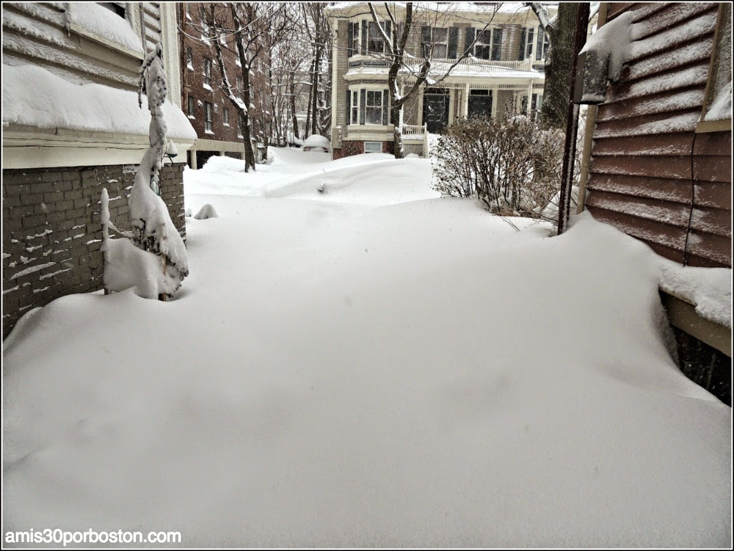 Juno: La Primera Snow Emergency del 2015 en Cambridge