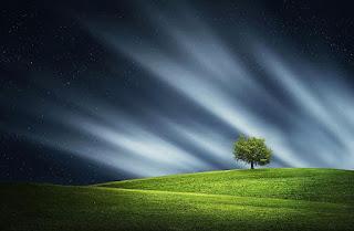 gramado e ceu com ventos fortes e nuvens esparsas