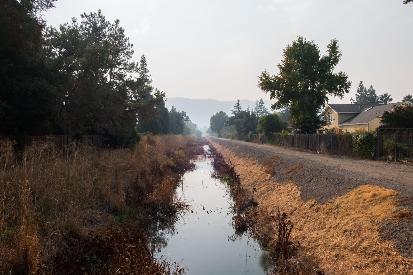 Naturetastic Blog: Smoke in Pleasanton, CA (From SF North