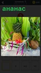 В корзине среди высоких широких листьев стоит корзина внутри которого находится ананас