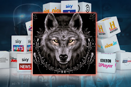 How To Install Wolf Kodi Addon Repo