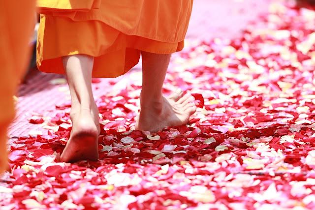 Pensamentos budistas
