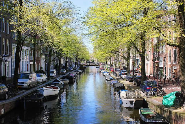 cool things to do in Amsterdam