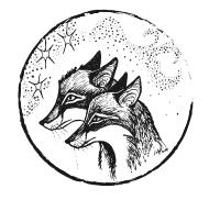 awfully big reviews: FOXCRAFT: The Taken, by Inbali
