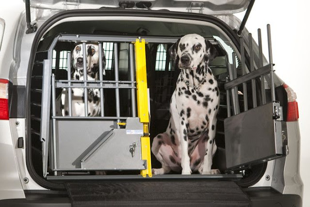 dog crate for car travel