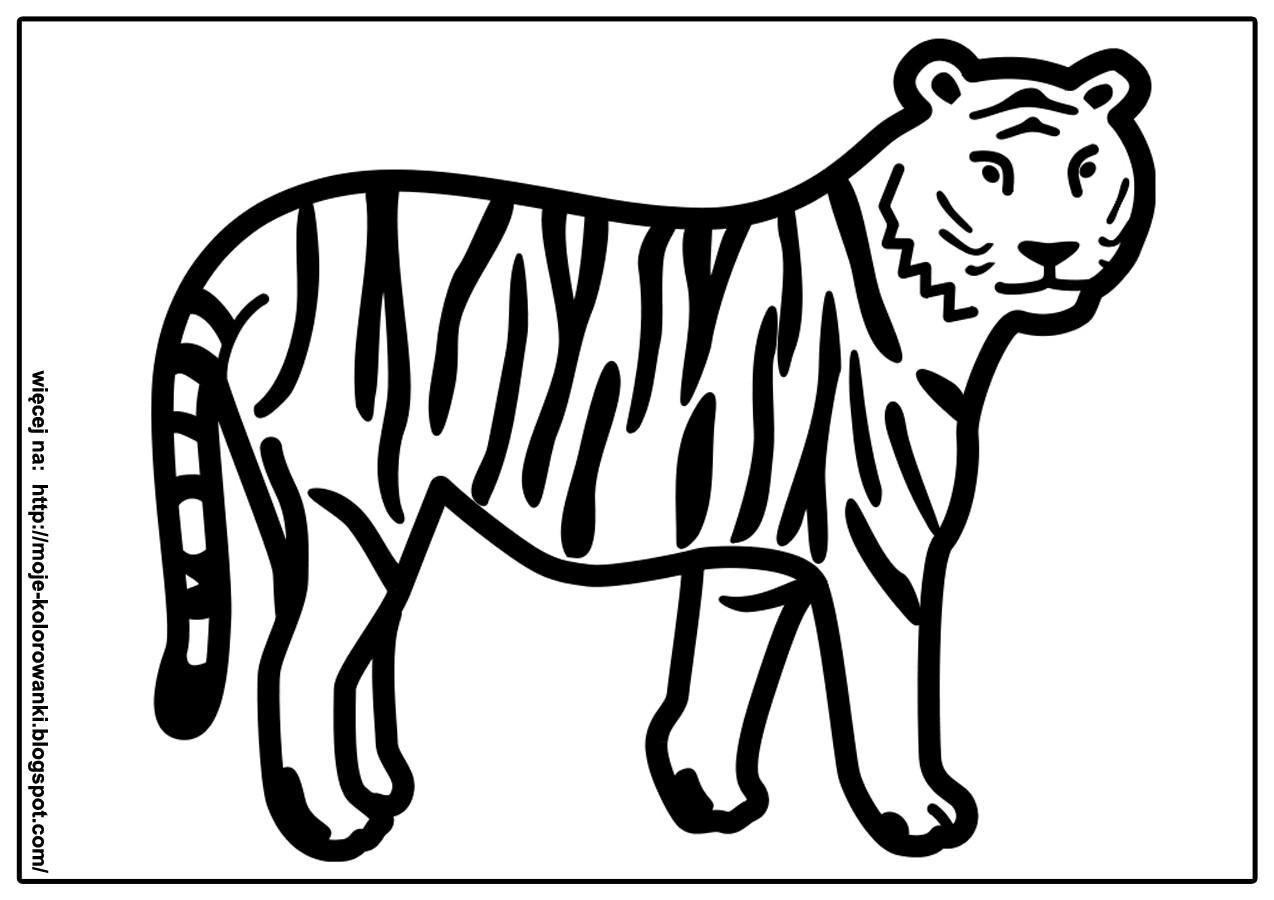 Kolorowanki Dla Dzieci Tygrys