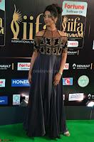 Sanjjanaa Galrani aka Archana Galrani in Maroon Gown beautiful Pics at IIFA Utsavam Awards 2017 09.JPG
