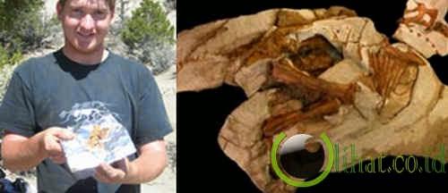 Penemuan fosil dinosaurus Parasaurolophus terlengkap