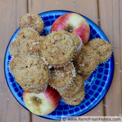 pic of a plate of easy toffee apple mini muffins and SweeTango apples