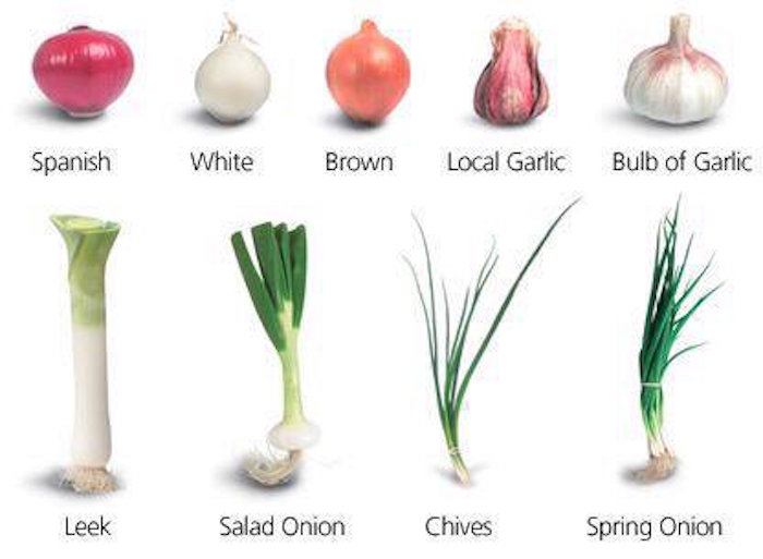 Types of onion