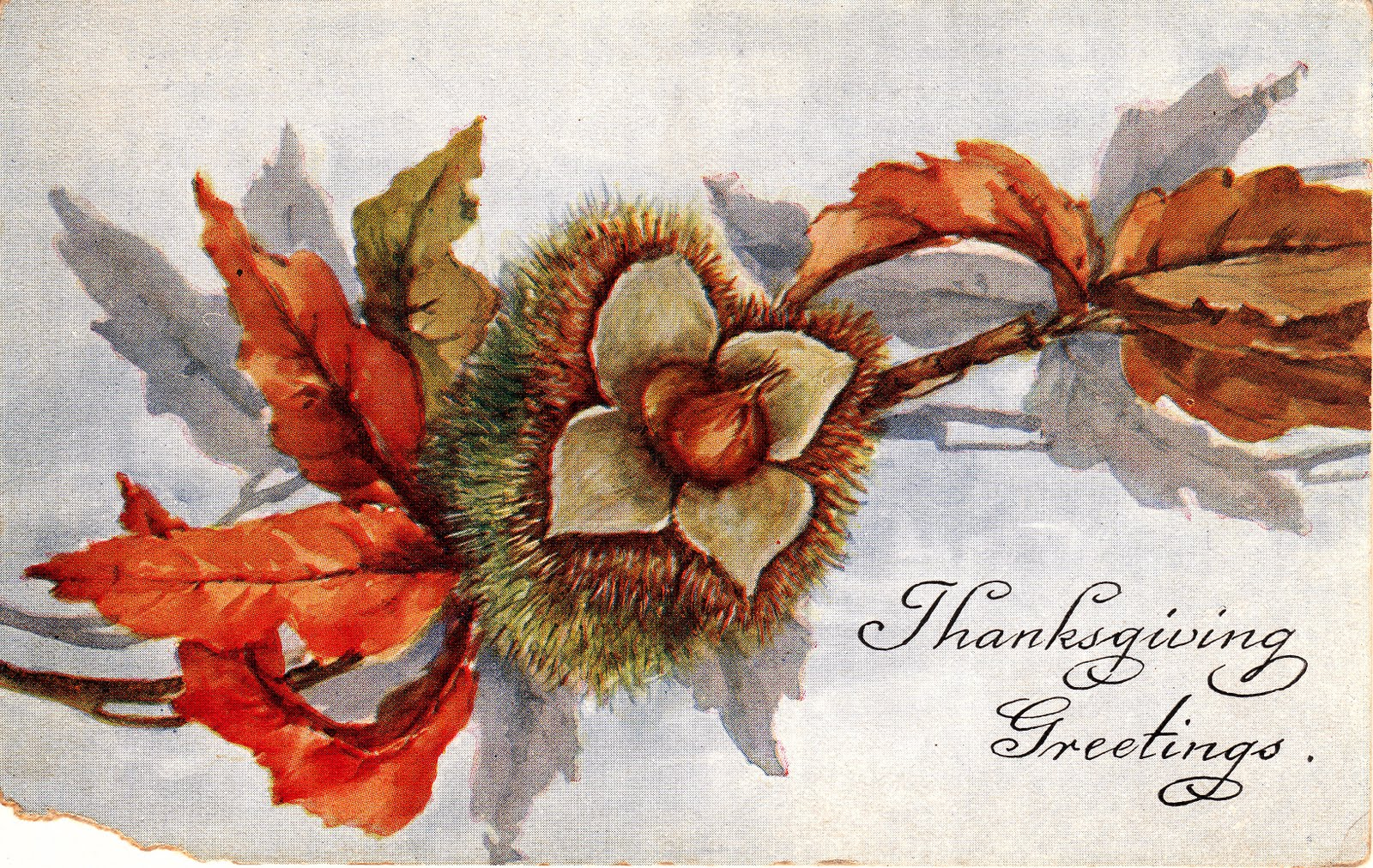 My Ancestors And Me Thanksgiving Greetings