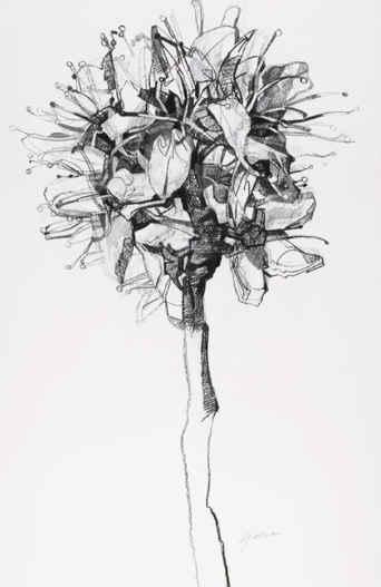 Por amor al arte: Clarissa Galliano