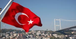 Gerakan Pembaharuan di Turki