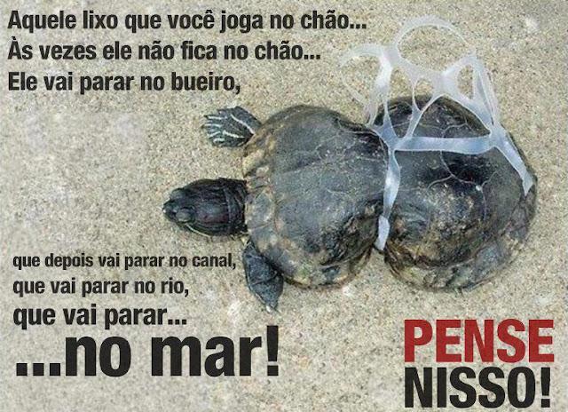 Lixo no mar, poluição marinha, Nó de Pesca
