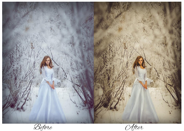 kembali lagi bersama aku di katamastah Free Download Best Lightroom Preset For Wedding