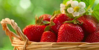 Manfaat Strawberry Bagi Tubuh