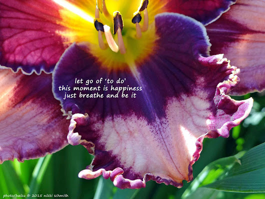 DAYLILY HAIKU THURSDAY | Let go and be. ~ a girl and her garden - a daylily blog