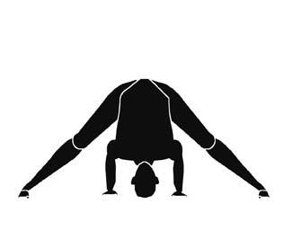 dig yoga march  forward bends