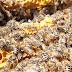 Αρισταίος ο πατέρα της μελισσοκομίας