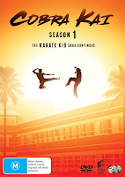 Cobra Kai Season 1 Dual Audio [Hindi-DD5.1] 720p HDRip ESubs Download