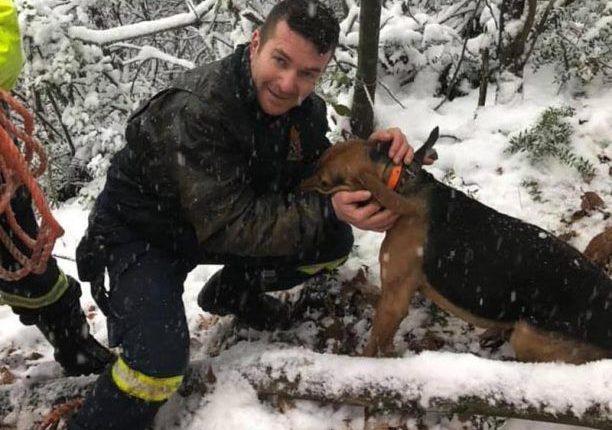 Πυροσβέστες έσωσαν σκύλο που έπεσε σε πηγάδι βάθους 30 μέτρων στην Ολυμπιάδα Χαλκιδικής