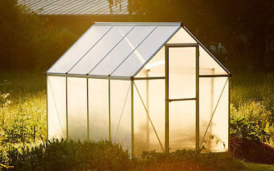 jasa greenhouse bambu baja ringan