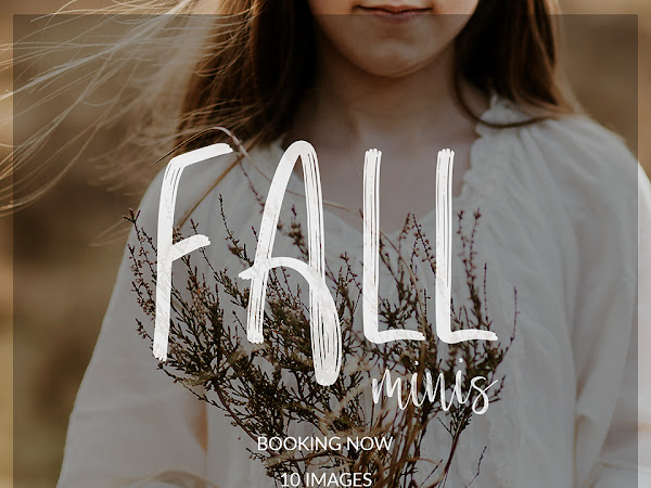 Free Fall Mini Session Studio Marketing Template