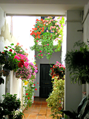 Porches in Triana