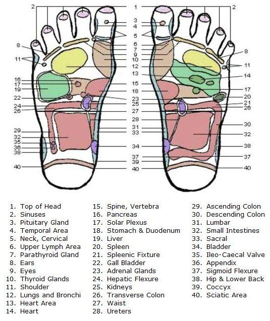 Foot Detox: November 2010  |Acupressure Points Chart Toes