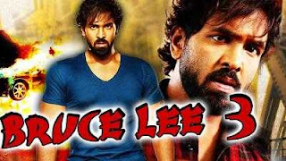 Bruce Lee 3 2009 Hindi Dubbed Full Movie Download 400MB