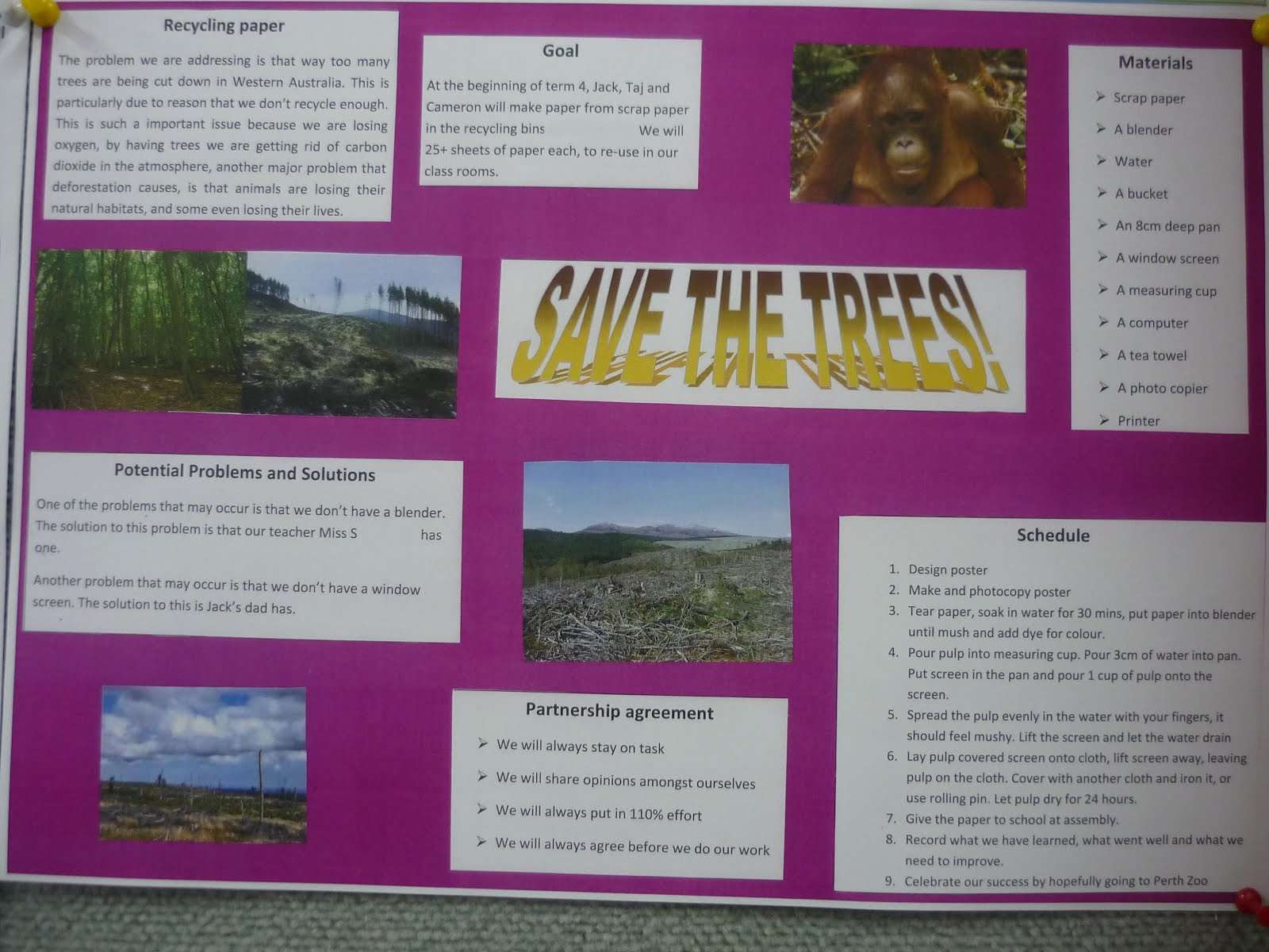 School Project Posters...