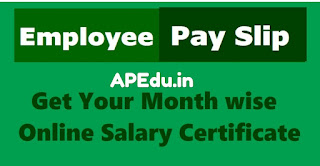 AP Employee Pay Details / salary Details with Treasury ID - Easy way