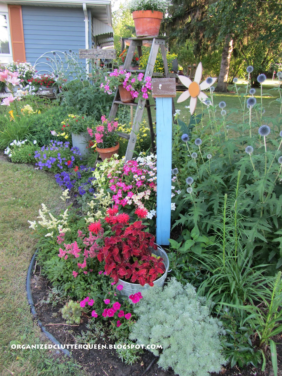 The Front Yard Flower Border