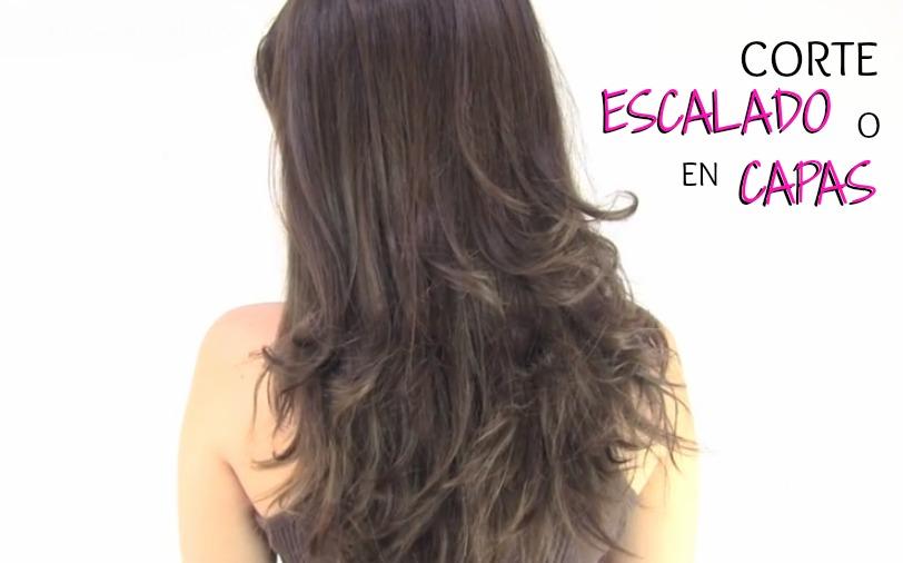 Tutoriales De Peinados 2014 - Corte-de-pelo-por-detrs