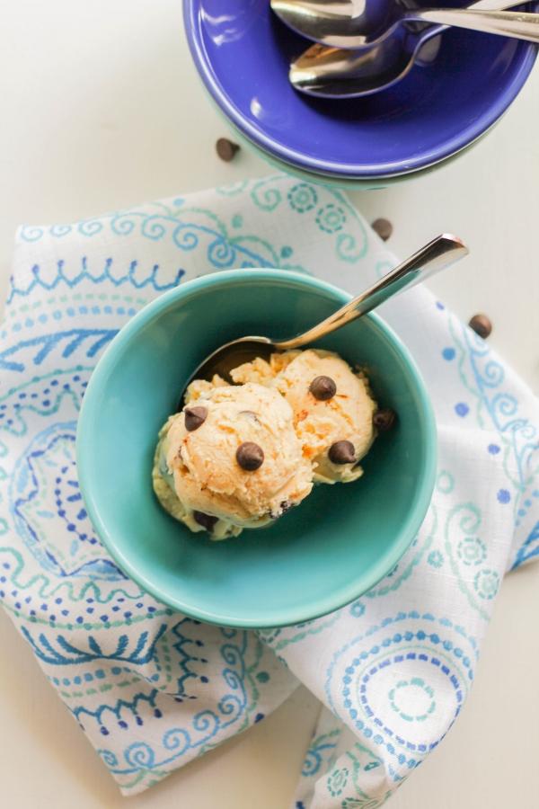 Peanut Butter Chocolate Chip Frozen Yogurt | The Chef Next Door